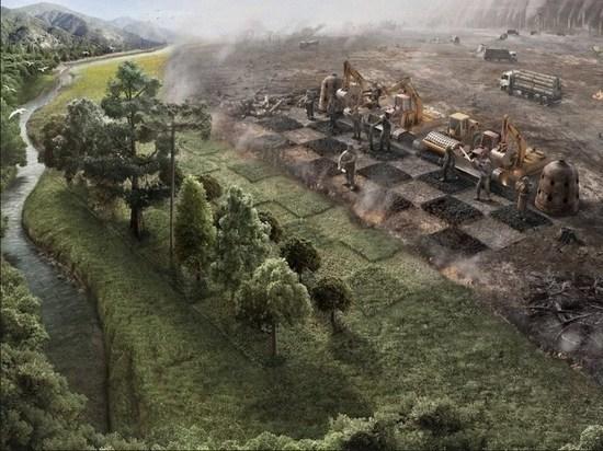 От кого зависит экологическое благополучие страны?